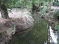 River Colne in Great Yeldham - geograph.org.uk - 1466490.jpg
