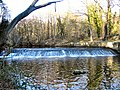 River Don Weir - geograph.org.uk - 132906.jpg