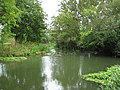 River Ember near Weston Green - geograph.org.uk - 928813.jpg