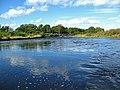 River Nairn near Wester Allanaha - geograph.org.uk - 544194.jpg