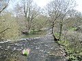River Tanat downstream - geograph.org.uk - 1802405.jpg