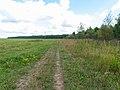 Road - panoramio (159).jpg