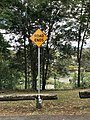 Road Ends sign in Consort Street, Corinda, Queensland 03.jpg