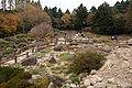 Rokko alpine botanical garden19n4272.jpg