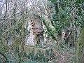 Ruin in Coed y Cra - geograph.org.uk - 324361.jpg