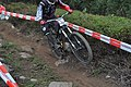 Running Dog Track start - Downhill Monchique 2014 (15380915601).jpg