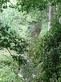 Ruschdahlmoor (Lesumer Moor), Bremen 3.JPG