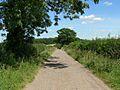 Rushey Lane, Leicestershire - geograph.org.uk - 516385.jpg
