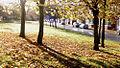 Russell Street in Autumn, Moss Side, Manchester, UK.jpg