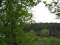 Russian north. Valaam isl. Karelia. Russia. Русский север. Валаам. Карелия. Россия - panoramio (1).jpg