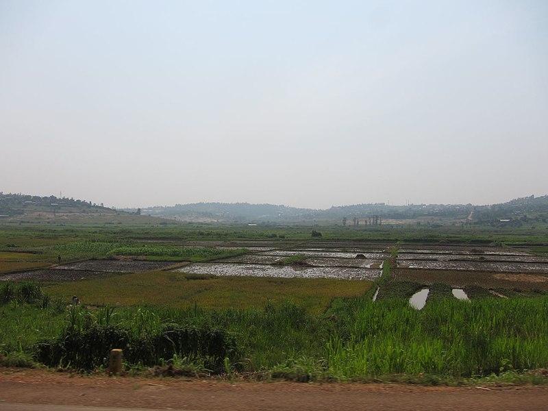 File:Rwanda (6817415647).jpg