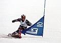 Ryan McDonald snowboard PGS.jpg