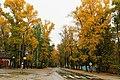 Ryazan, Ryazan Oblast, Russia - panoramio.jpg