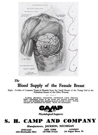 Bra size - This 1932 ad by the S.H. Camp Company was the first to denote cup size and band measurement