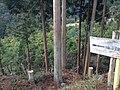 Sagamizuomiyanowakicho, Ukyo Ward, Kyoto, Kyoto Prefecture 616-8465, Japan - panoramio (1).jpg