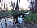 Saint-Julien-la-Geneste (Puy-de-Dôme) ruisseau Auzelle.JPG