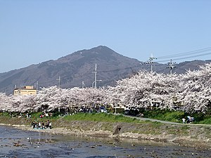 Mount Hiei - The view from Kyoto with Cherry blossoms. (April 2005)