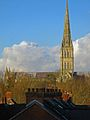 Salisbury Cathedral and chimney pots - geograph.org.uk - 294501.jpg
