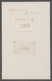 Salpa tricuspida - - Print - Iconographia Zoologica - Special Collections University of Amsterdam - UBAINV0274 092 08 0055.tif