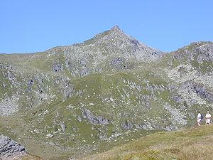 Kitzbühel Alps - Image: Salzachgeier