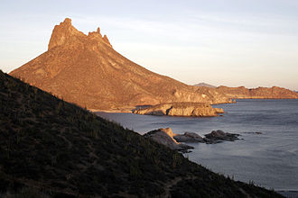 The Log from the Sea of Cortez - Puerto San Carlos
