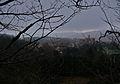 Sasso Pisano, veduta del borgo medievale dal castagneto.jpg
