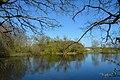 Schleswig-Holstein, Kellinghusen, kleiner Rensinger See NIK 9590.JPG