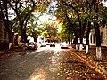 Sciusev street Chisinau.jpg