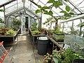 Seasonal Display Alcove - Wellesley College - DSC09719.JPG