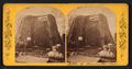 Section of the Mammoth Tree, from Robert N. Dennis collection of stereoscopic views.png