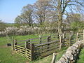 Sheep pens near St. Cuthbert's Church, Nether Denton - geograph.org.uk - 1372542.jpg