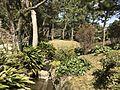 Shukkei Garden 2.jpg