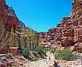 Side canyon at Petra.jpg