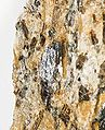 Sillimanite-pas-18b.jpg