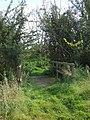 Small footbridge - geograph.org.uk - 979705.jpg