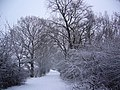 Snow in England - panoramio.jpg
