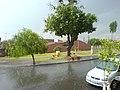 Sol e chuva - panoramio.jpg