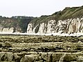 South Flamborough Beach - geograph.org.uk - 424240.jpg