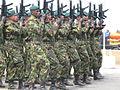 Sri Lanka Military 0117.jpg