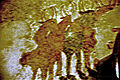 St Prokulus Fresken 4.jpg