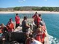 Starr-131217-3786-Sporobolus virginicus-habitat with crew and volunteers ready to unload Ohua-Honokanaia-Kahoolawe (24933052840).jpg