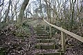 Steps up Bradlow Knoll - geograph.org.uk - 342761.jpg