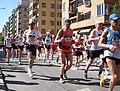 Stockholm Marathon 2009b.jpg