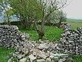 Stone walls - geograph.org.uk - 435656.jpg
