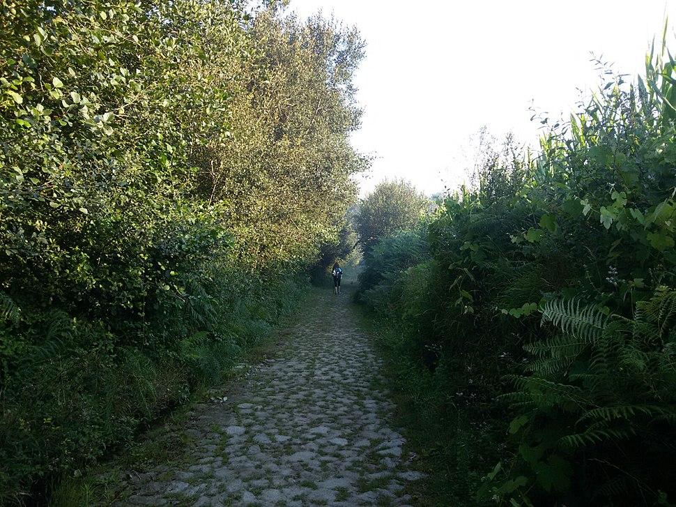 Strada romana lungo il percorso del Cammino Portoghese
