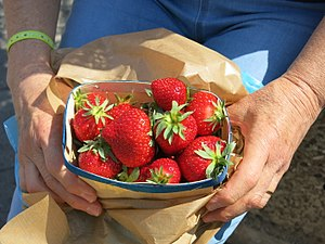 Strawberry of the Saleya market in Nice 2.jpg