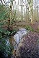 Stream, Entryhill Wood - geograph.org.uk - 322040.jpg