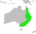 Strepera graculina-map.png