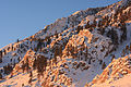 Sunrise light on Wheeler Crest frosted rocks.jpg