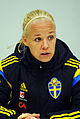 Sweden - Denmark, 8 April 2015 (17061595126).jpg